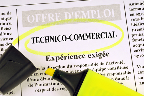 comp u00e9tences technico-commerciale et accroche cv